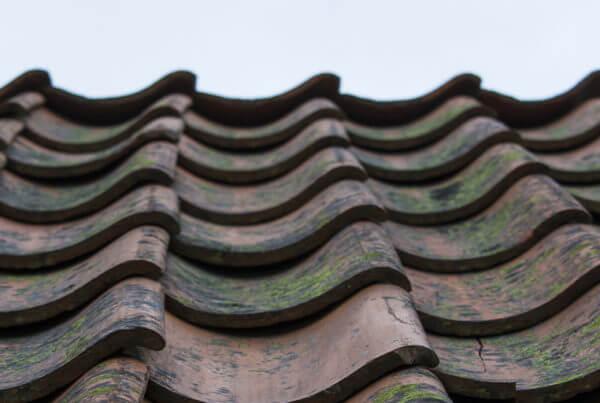 Renoveren van daken