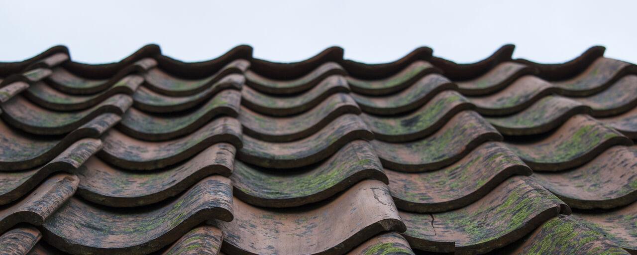 Renovatie van het dak